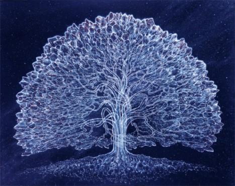 Imagen árbol, de Robert Venosa