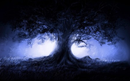 Miracle_Tree