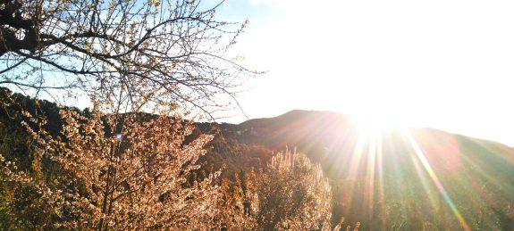 cropped-depares-sol-amanecer.jpg